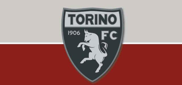 Come giocherà il Torino di Moreno Longo