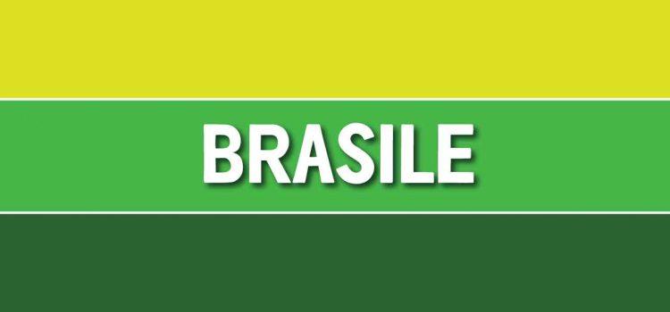 I migliori marcatori della storia del Brasile