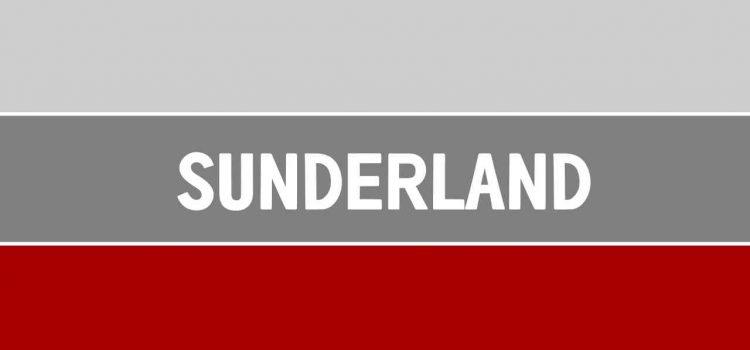 Il nuovo proprietario del Sunderland ha 23 anni